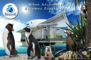 Wedding with the Penguins at Underwater World Langkawi
