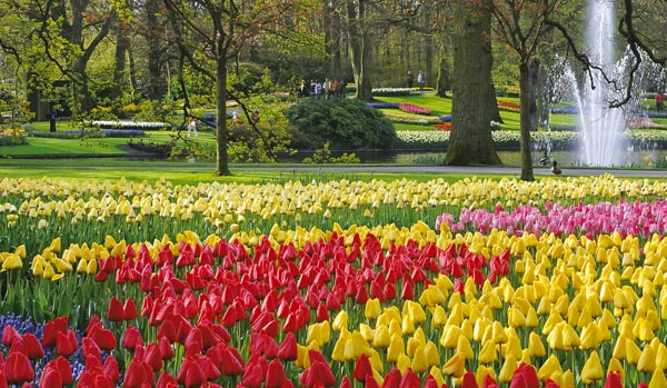 5 Most Fantastic And Spectacular Garden Around World