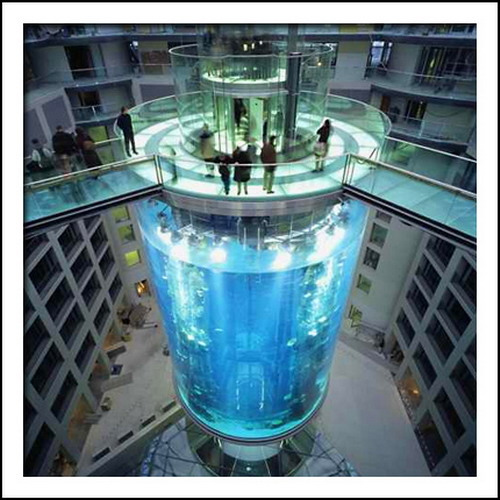 Coolest fish tanks in the world of the world 39 s coolest for Fish hotel tank