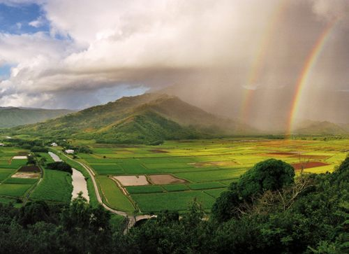 Top Things To Do In Kauai, Hawaii