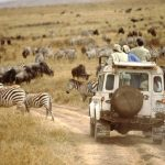 Top Five Reasons to Travel to Africa