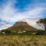Why You Need To Plan A Stellenbosch Holiday